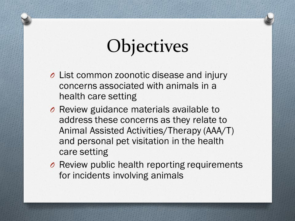 Veterinary Assessment O Performed within 30 days of the visit and includes: Name of pet and owner Statement of general good health and disposition Proof of current rabies vaccination Notation of flea control program Statement that animal is free of contagious diseases Signed by a veterinarian