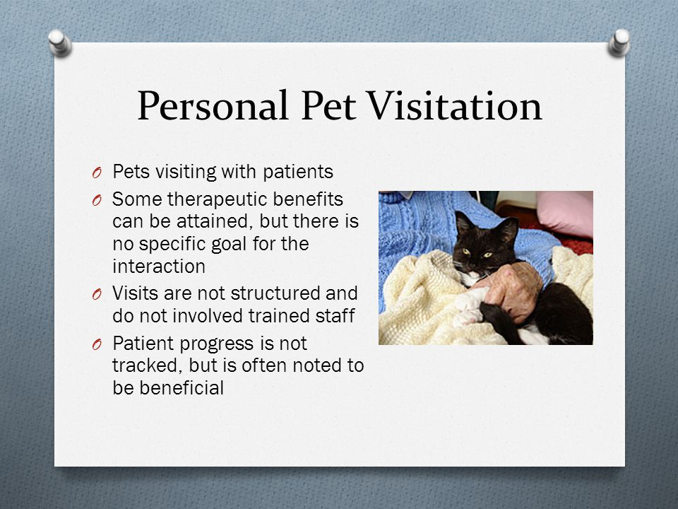Background O Growing (but limited) body of evidence regarding the benefits to patients/residents of Animal Assisted Interventions and pet visitations.