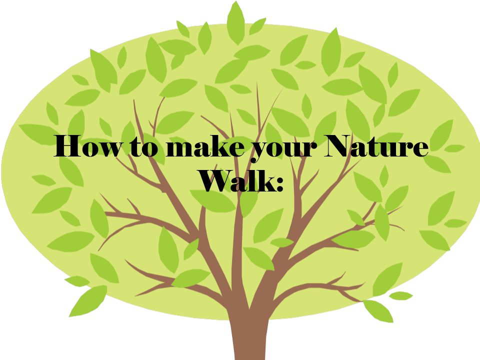 How to make your Nature Walk: