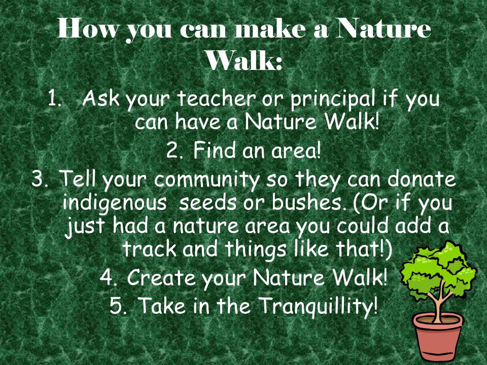 How you can make a Nature Walk: 1. Ask your teacher or principal if you can have a Nature Walk.