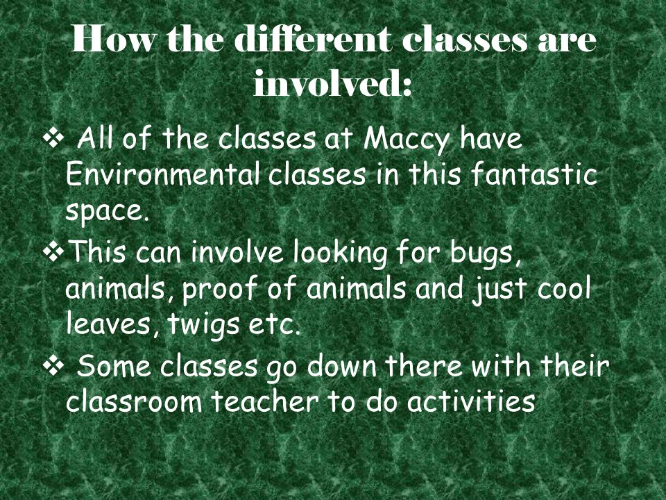 How the different classes are involved:  All of the classes at Maccy have Environmental classes in this fantastic space.