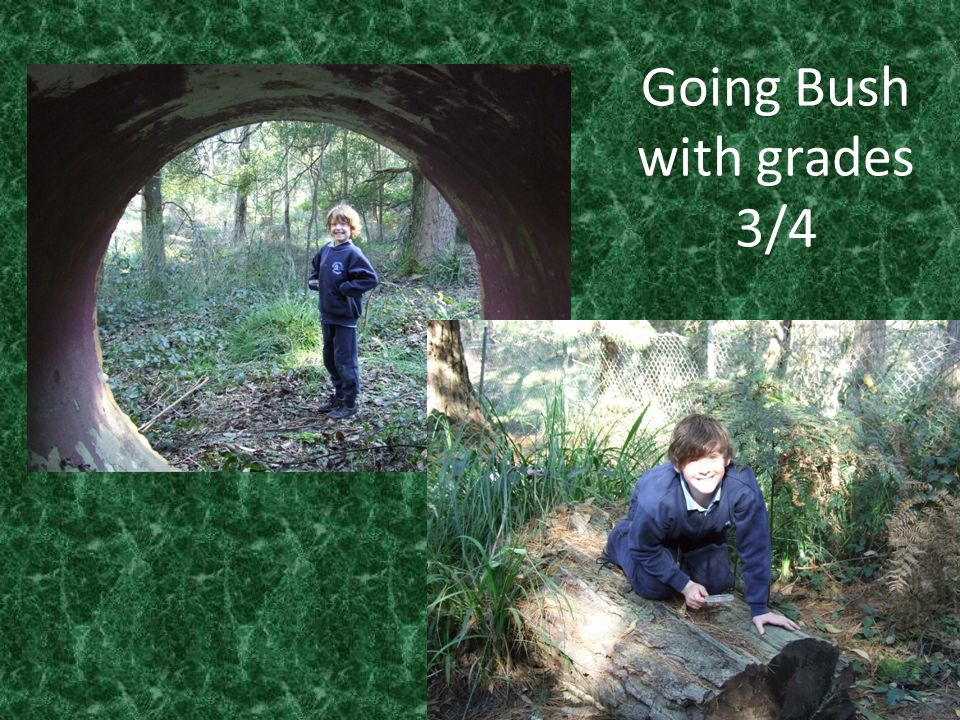 Going Bush Grade 3/4 Mapping the Nature Trail