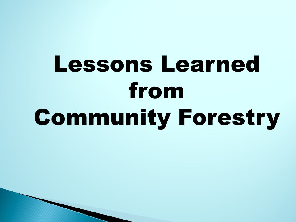Lessons Learned from Community Forestry