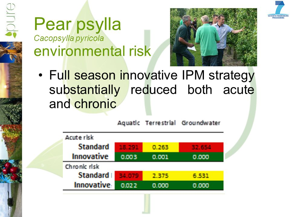 Pear psylla Cacopsylla pyricola environmental risk Full season innovative IPM strategy substantially reduced both acute and chronic
