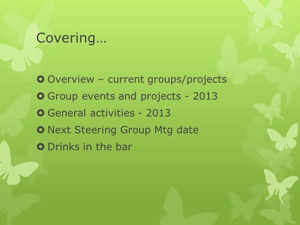 Covering…  Overview – current groups/projects  Group events and projects - 2013  General activities - 2013  Next Steering Group Mtg date  Drinks in the bar