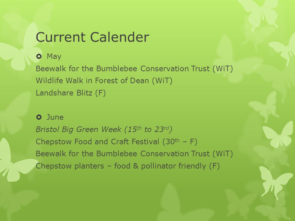 Current Calender  July Beewalk for the Bumblebee Conservation Trust (WiT) Wildlife Walk(WiT) Edible Gardens Tour (F) Landshare Blitz (F)  August Green Gathering 2013 (1 st -4 th ) Chepstow Show Beewalk for the Bumblebee Conservation Trust (WiT) Landshare Blitz (F)