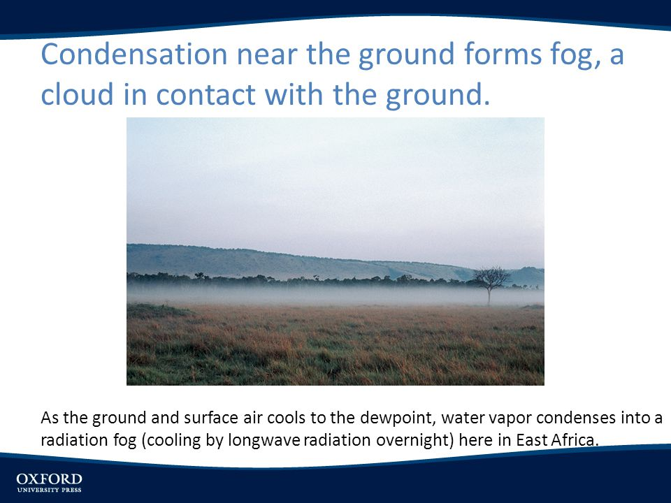 Condensation near the ground forms fog, a cloud in contact with the ground. As the ground and surface air cools to the dewpoint, water vapor condenses
