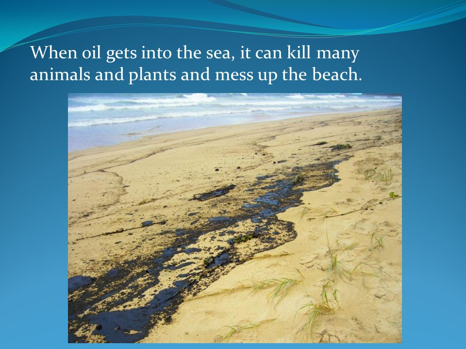 When oil gets into the sea, it can kill many animals and plants and mess up the beach.