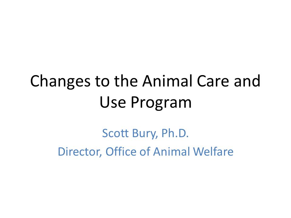 Changes to the Animal Care and Use Program Scott Bury, Ph.D. Director, Office of Animal Welfare
