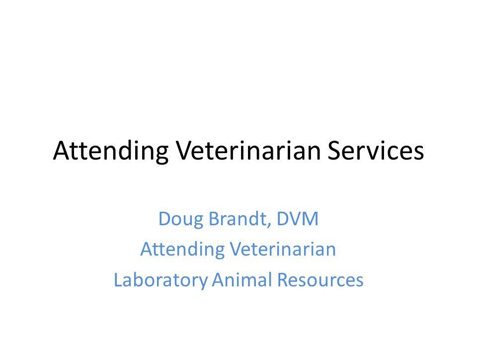 Attending Veterinarian Services Doug Brandt, DVM Attending Veterinarian Laboratory Animal Resources