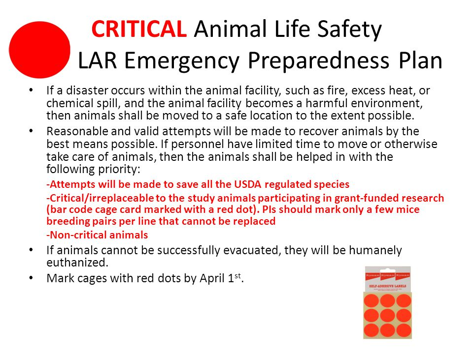 CRITICAL Animal Life Safety LAR Emergency Preparedness Plan If a disaster occurs within the animal facility, such as fire, excess heat, or chemical spill, and the animal facility becomes a harmful environment, then animals shall be moved to a safe location to the extent possible.