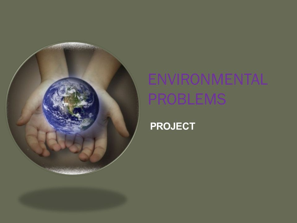 ENVIRONMENTAL PROBLEMS PROJECT