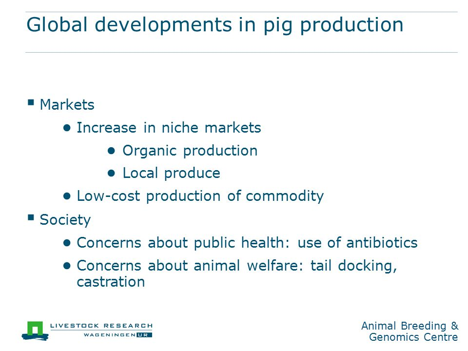 Animal Breeding & Genomics Centre Global developments in pig production  Markets ● Increase in niche markets ● Organic production ● Local produce ● Low-cost production of commodity  Society ● Concerns about public health: use of antibiotics ● Concerns about animal welfare: tail docking, castration