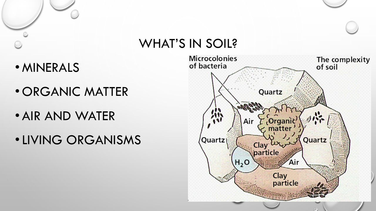 SOIL IS FOUND IN LAYERS CALLED HORIZONS