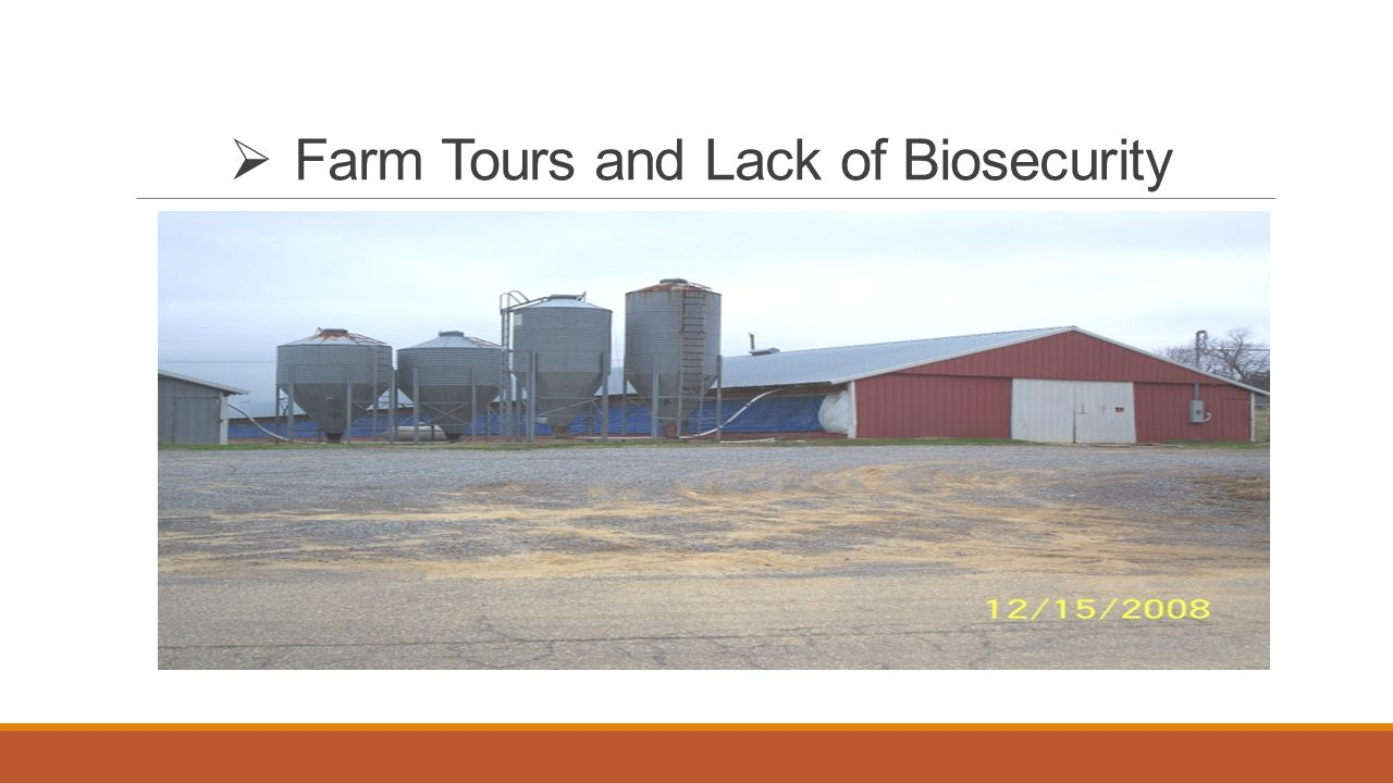  Farm Tours and Lack of Biosecurity