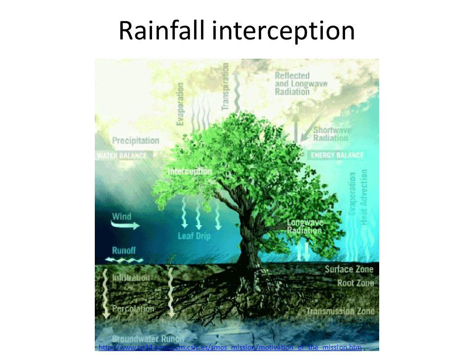 Rainfall interception http://www.cp34-smos.icm.csic.es/smos_mission/motivation_of_the_mission.htm