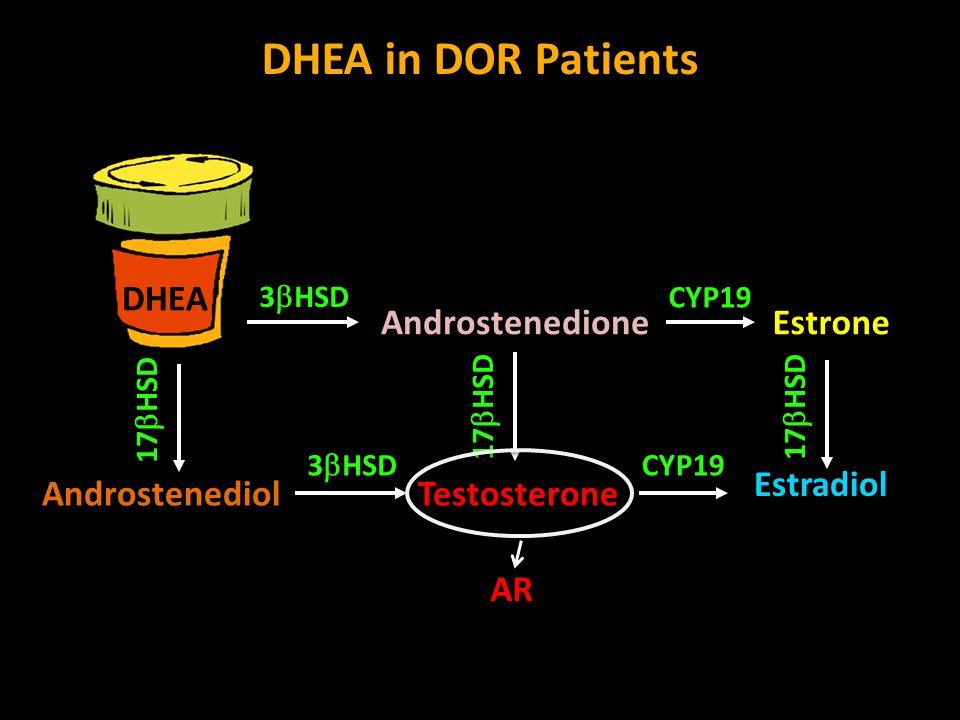 DHEA in DOR Patients DHEA Testosterone Androstenedione Androstenediol 17  HSD Estradiol CYP19 Estrone 3  HSD CYP19 3  HSD 17  HSD AR
