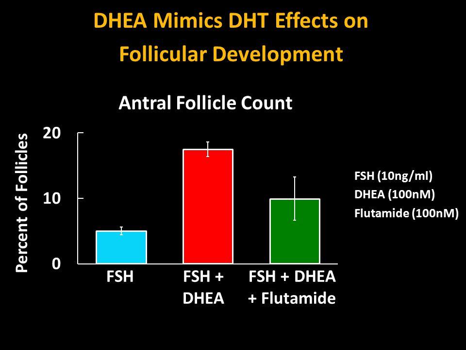 FSH (10ng/ml) DHEA (100nM) Flutamide (100nM) FSHFSH + DHEA FSH + DHEA + Flutamide Percent of Follicles Antral Follicle Count DHEA Mimics DHT Effects on Follicular Development