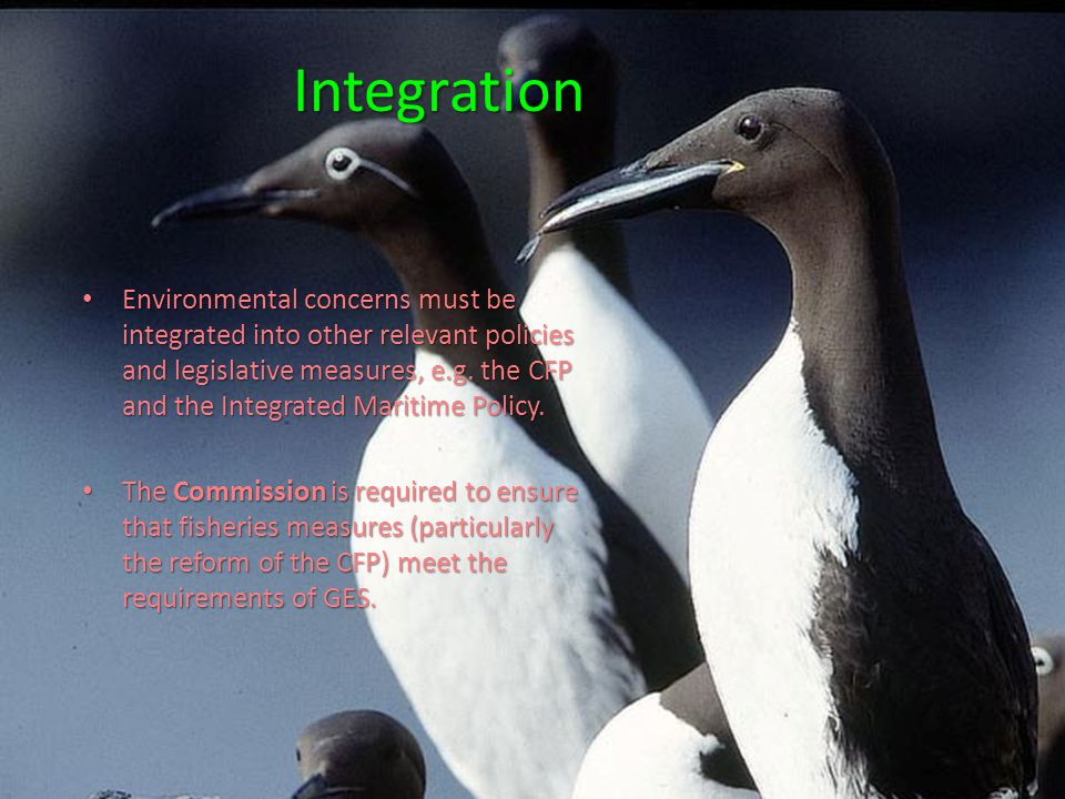 Integration Environmental concerns must be integrated into other relevant policies and legislative measures, e.g.