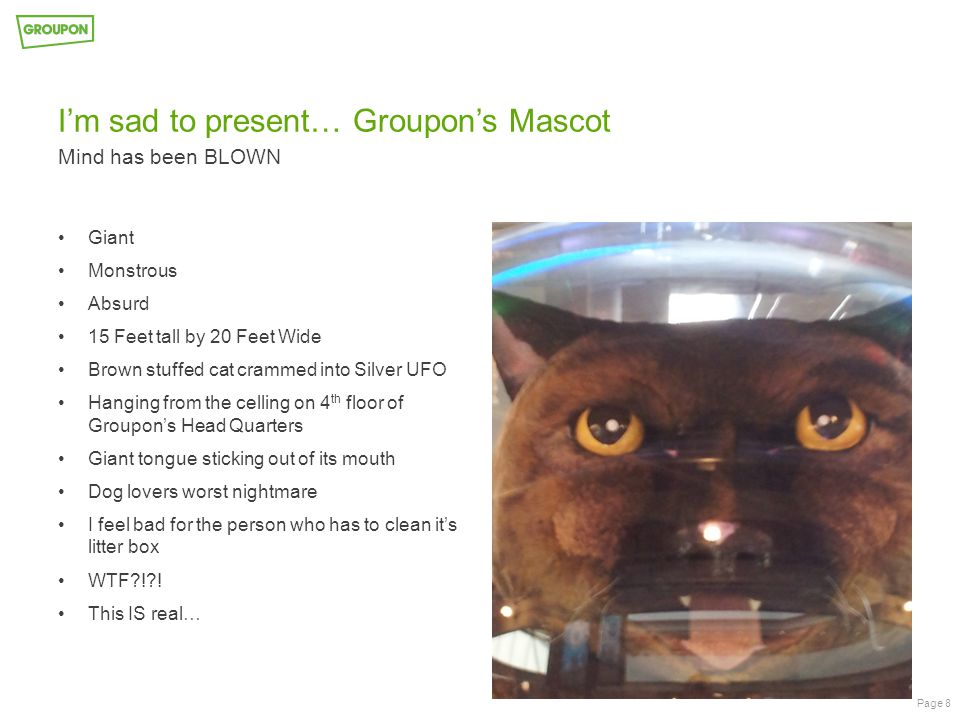 I'm sad to present… Groupon's Mascot Mind has been BLOWN Page 8 Giant Monstrous Absurd 15 Feet tall by 20 Feet Wide Brown stuffed cat crammed into Silver UFO Hanging from the celling on 4 th floor of Groupon's Head Quarters Giant tongue sticking out of its mouth Dog lovers worst nightmare I feel bad for the person who has to clean it's litter box WTF?!?.