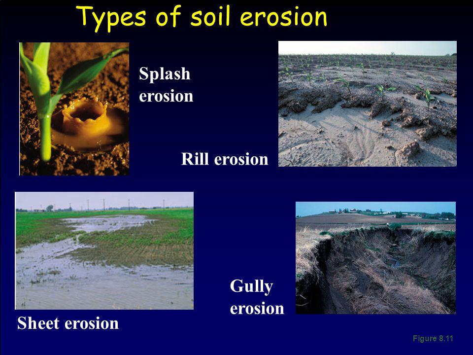 Types of soil erosion Figure 8.11 Splash erosion Rill erosion Gully erosion Sheet erosion