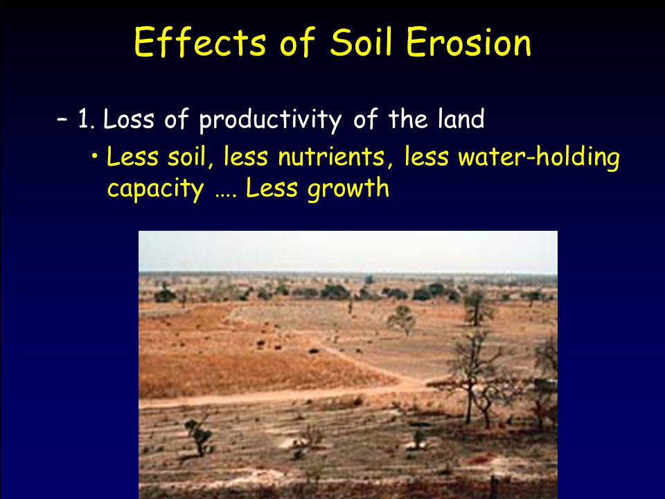 Effects of Soil Erosion –1. Loss of productivity of the land Less soil, less nutrients, less water-holding capacity …. Less growth