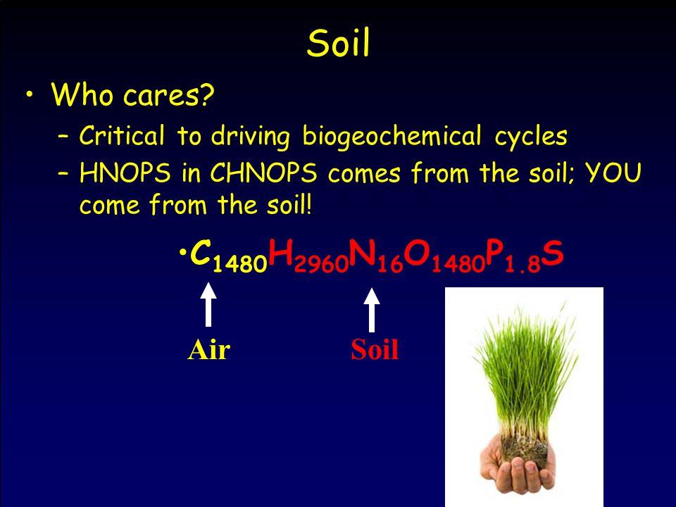 Soil Who cares.