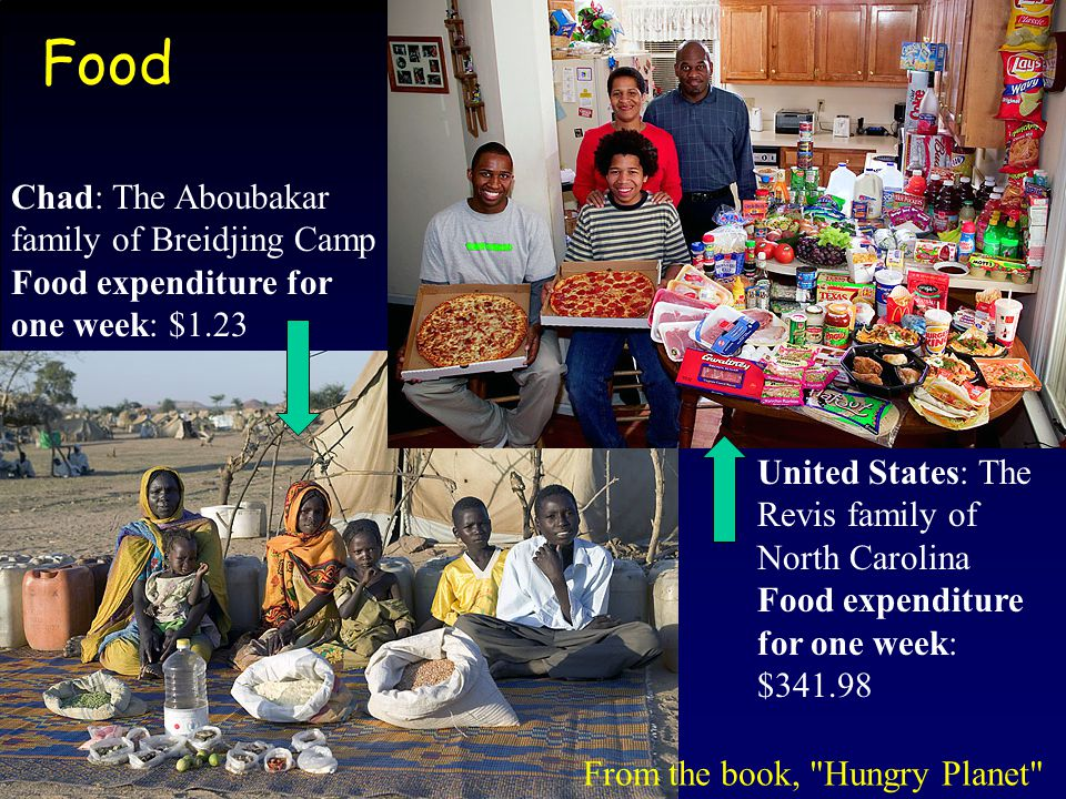 Food United States: The Revis family of North Carolina Food expenditure for one week: $341.98 Chad: The Aboubakar family of Breidjing Camp Food expend