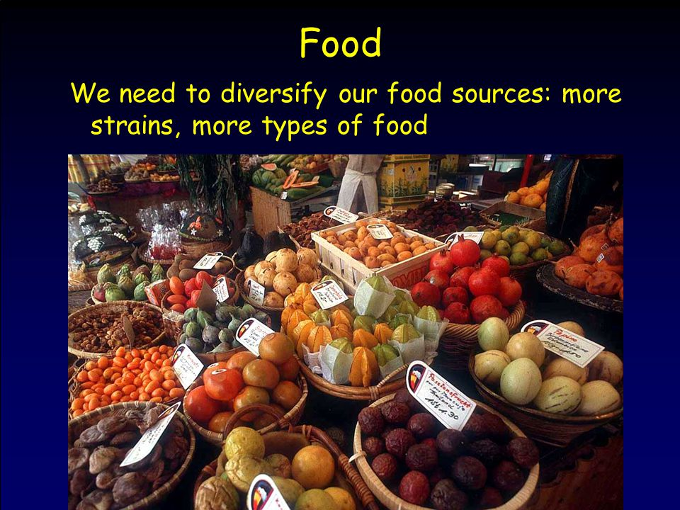 Food We need to diversify our food sources: more strains, more types of food