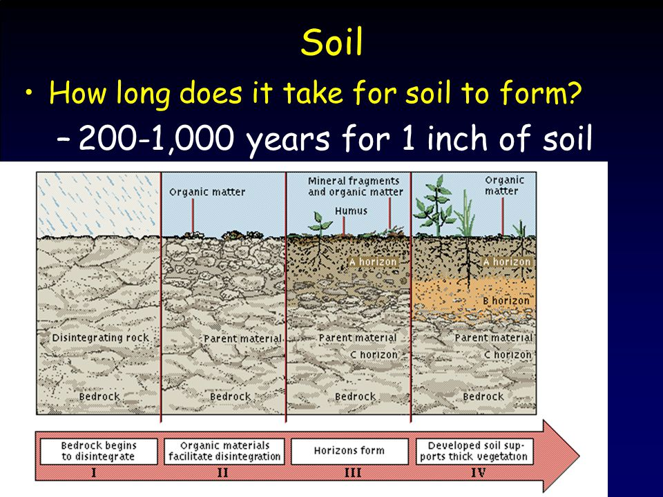 Soil How long does it take for soil to form? –200-1,000 years for 1 inch of soil
