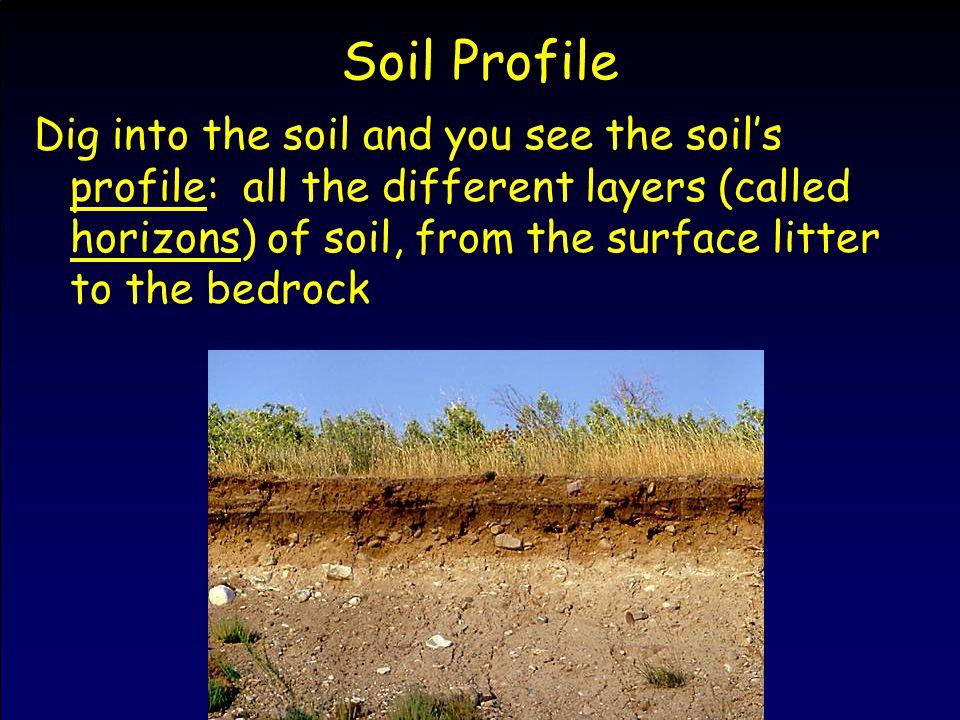 Effects of Soil Erosion –6.