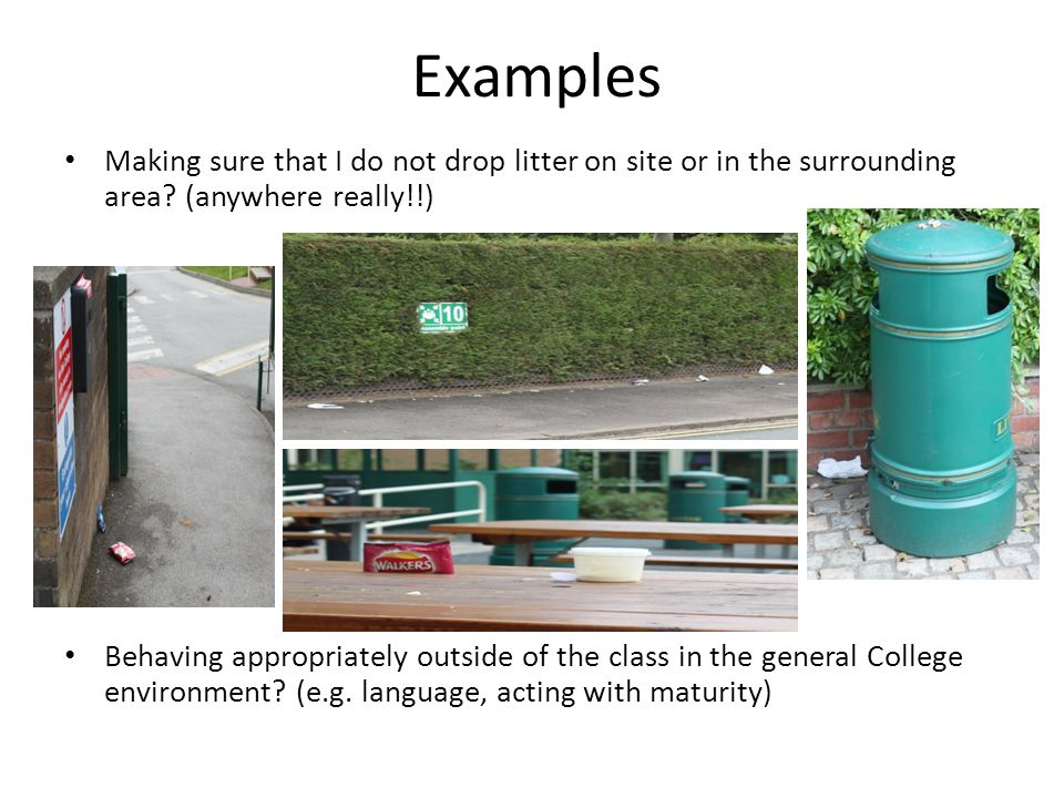 Examples Making sure that I do not drop litter on site or in the surrounding area.