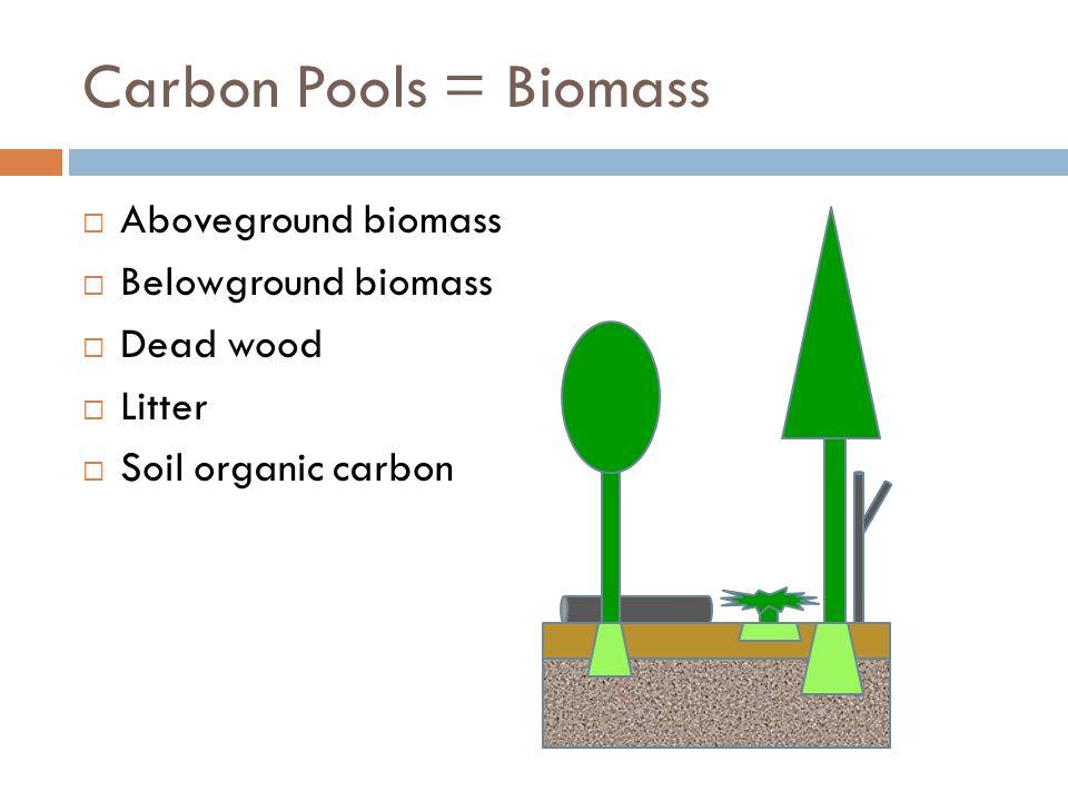 Aboveground Live Tree Biomass