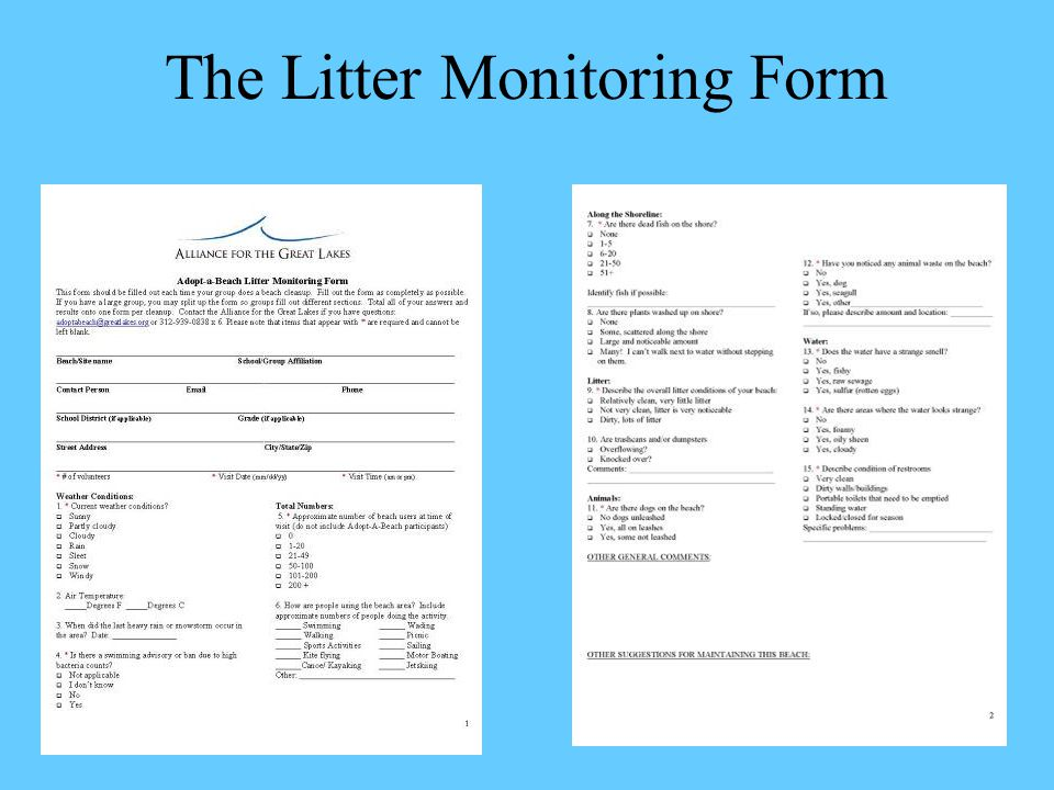 The Litter Monitoring Form