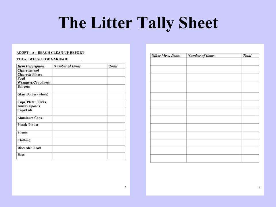 The Litter Tally Sheet