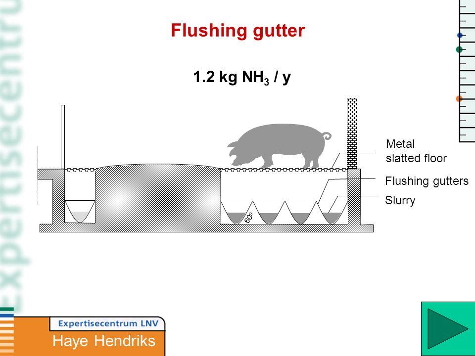 Slurry Metal slatted floor 1.2 kg NH 3 / y Flushing gutters Flushing gutter Haye Hendriks