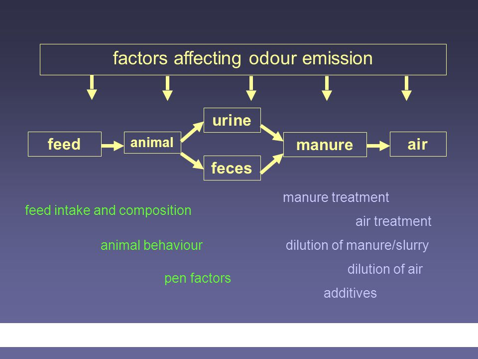 factors affecting odour emission feed animal urine feces manure air manure treatment air treatment dilution of manure/slurry dilution of air additives feed intake and composition animal behaviour pen factors