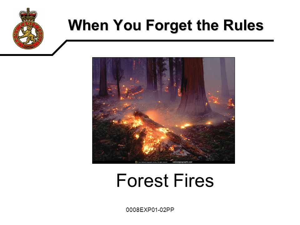 0008EXP01-02PP When You Forget the Rules Forest Fires