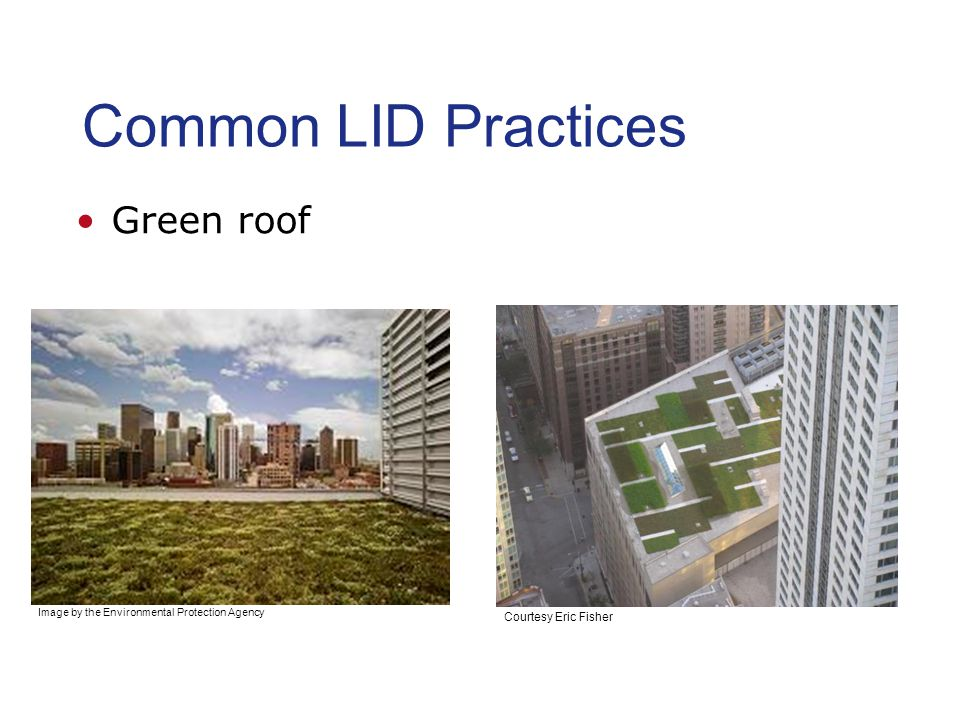 Common LID Practices Green roof Courtesy Eric Fisher Image by the Environmental Protection Agency