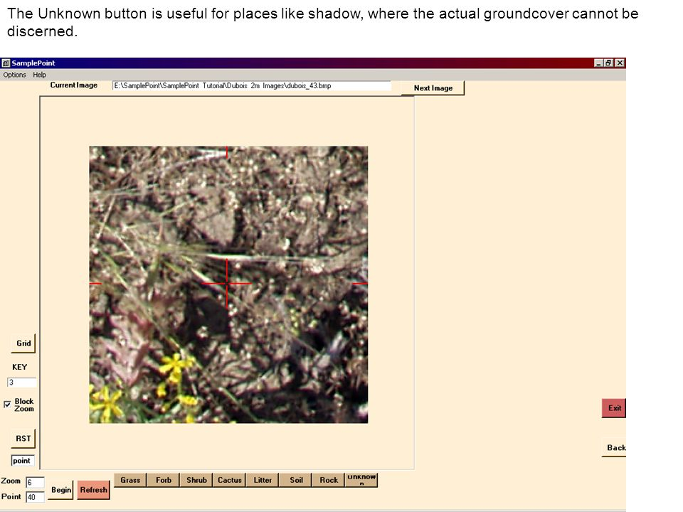 The Unknown button is useful for places like shadow, where the actual groundcover cannot be discerned.