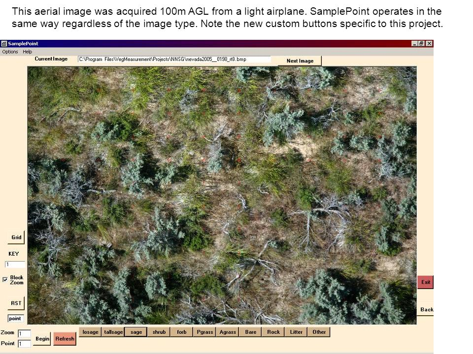 This aerial image was acquired 100m AGL from a light airplane. SamplePoint operates in the same way regardless of the image type. Note the new custom