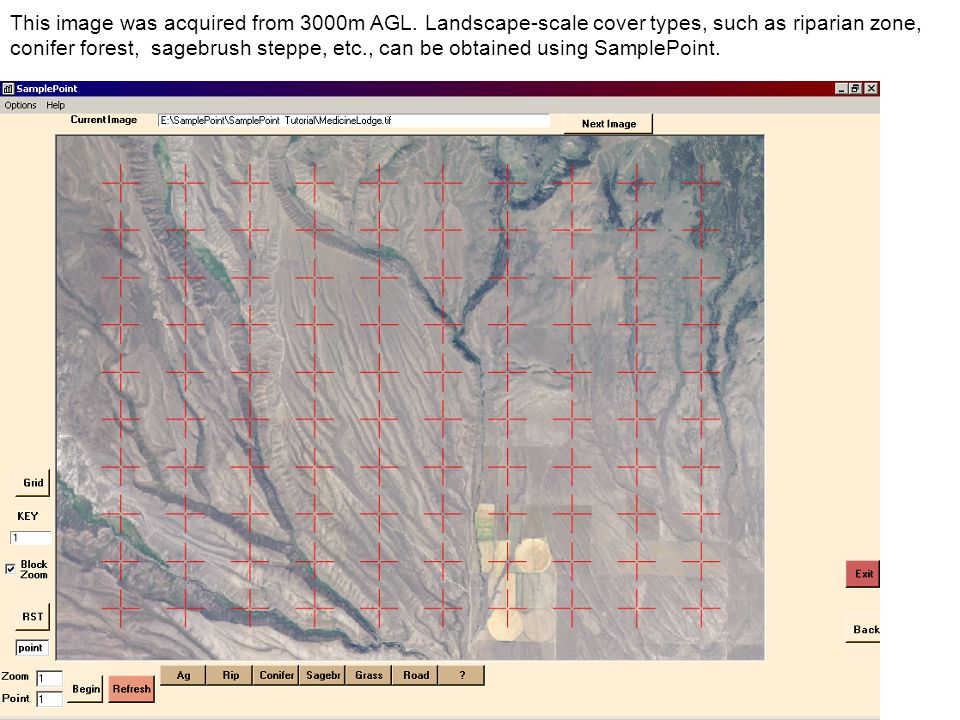 This image was acquired from 3000m AGL. Landscape-scale cover types, such as riparian zone, conifer forest, sagebrush steppe, etc., can be obtained us