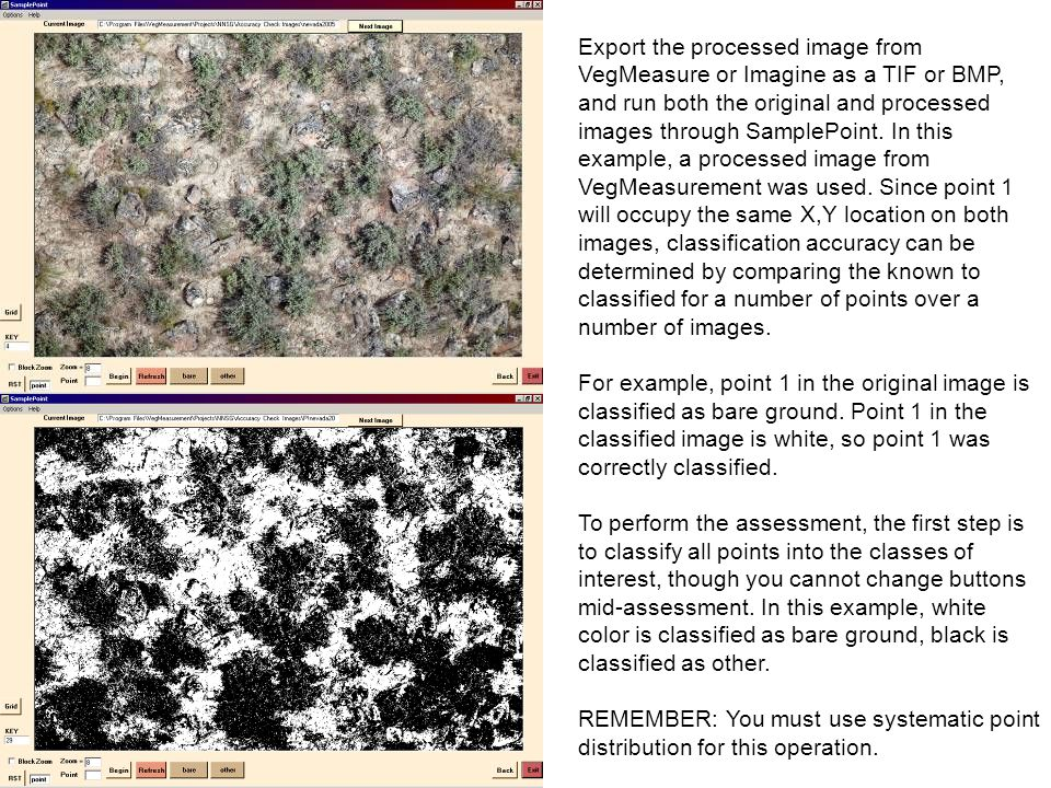 Export the processed image from VegMeasure or Imagine as a TIF or BMP, and run both the original and processed images through SamplePoint. In this exa