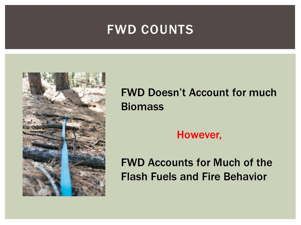 FWD COUNTS FWD Doesn't Account for much Biomass However, FWD Accounts for Much of the Flash Fuels and Fire Behavior