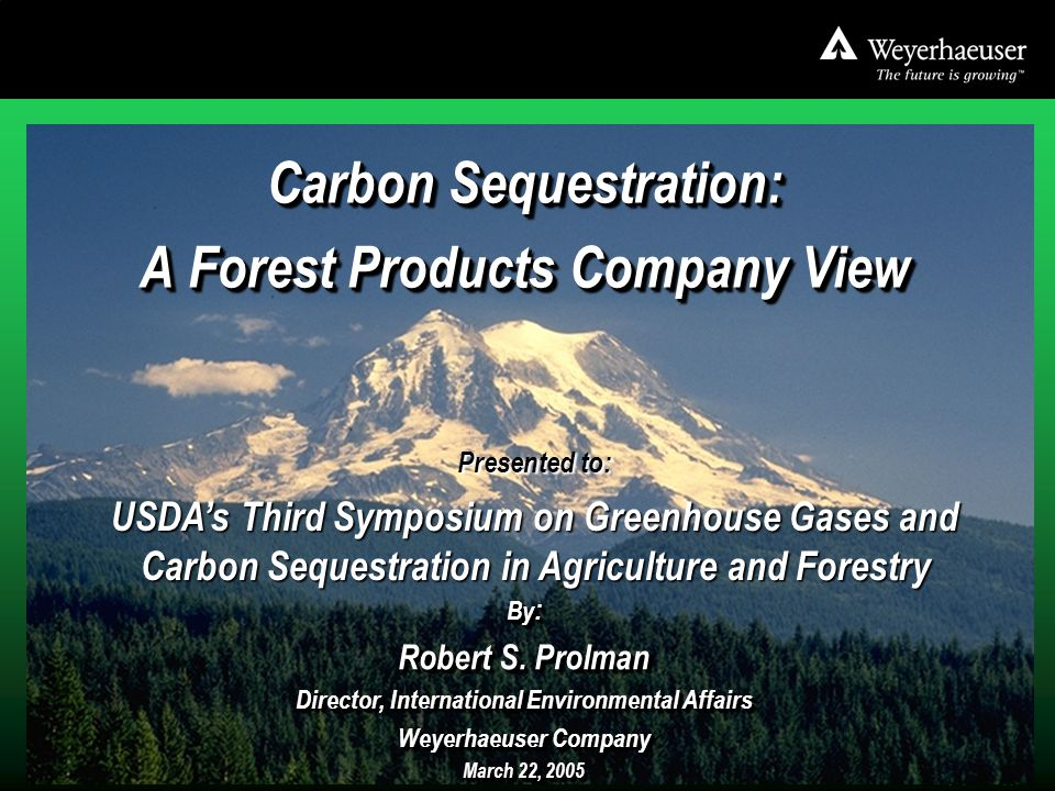 3-22-05 Baltimore USDA 3 rd GHG Symposium.ppt 1 Carbon Sequestration: A Forest Products Company View Carbon Sequestration: A Forest Products Company View By : Robert S.