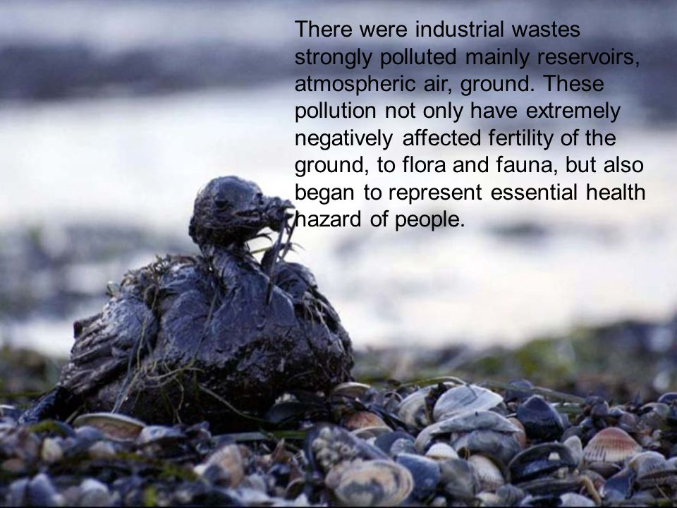 There were industrial wastes strongly polluted mainly reservoirs, atmospheric air, ground. These pollution not only have extremely negatively affected