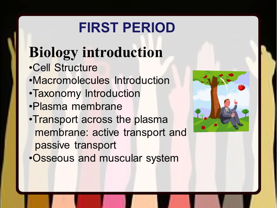 Biology introduction Cell Structure Macromolecules Introduction Taxonomy Introduction Plasma membrane Transport across the plasma membrane: active transport and passive transport Osseous and muscular system FIRST PERIOD