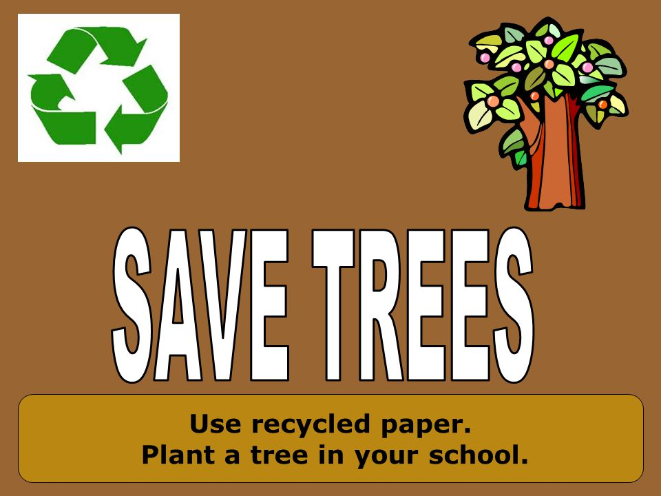 Use recycled paper. Plant a tree in your school.