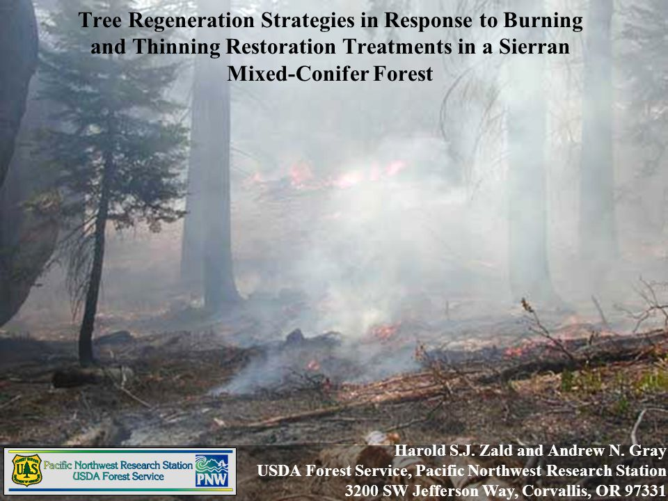 Harold S.J. Zald and Andrew N. Gray USDA Forest Service, Pacific Northwest Research Station 3200 SW Jefferson Way, Corvallis, OR 97331 Tree Regenerati