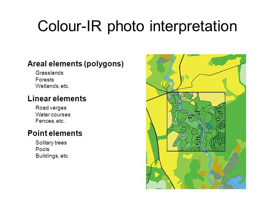 Colour-IR photo interpretation Areal elements (polygons) Grasslands Forests Wetlands, etc.